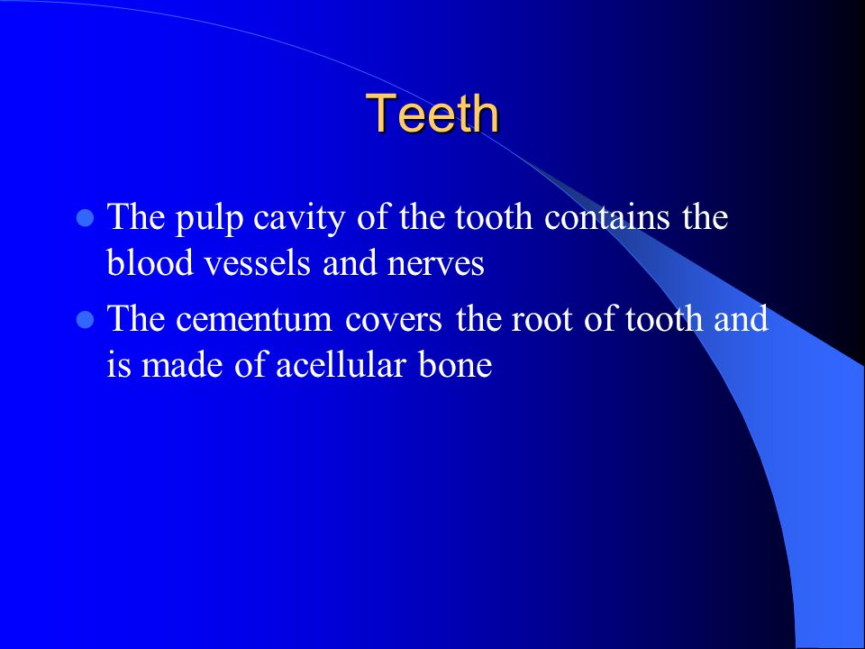 Teeth The pulp cavity of the tooth contains the blood vessels and nerves.