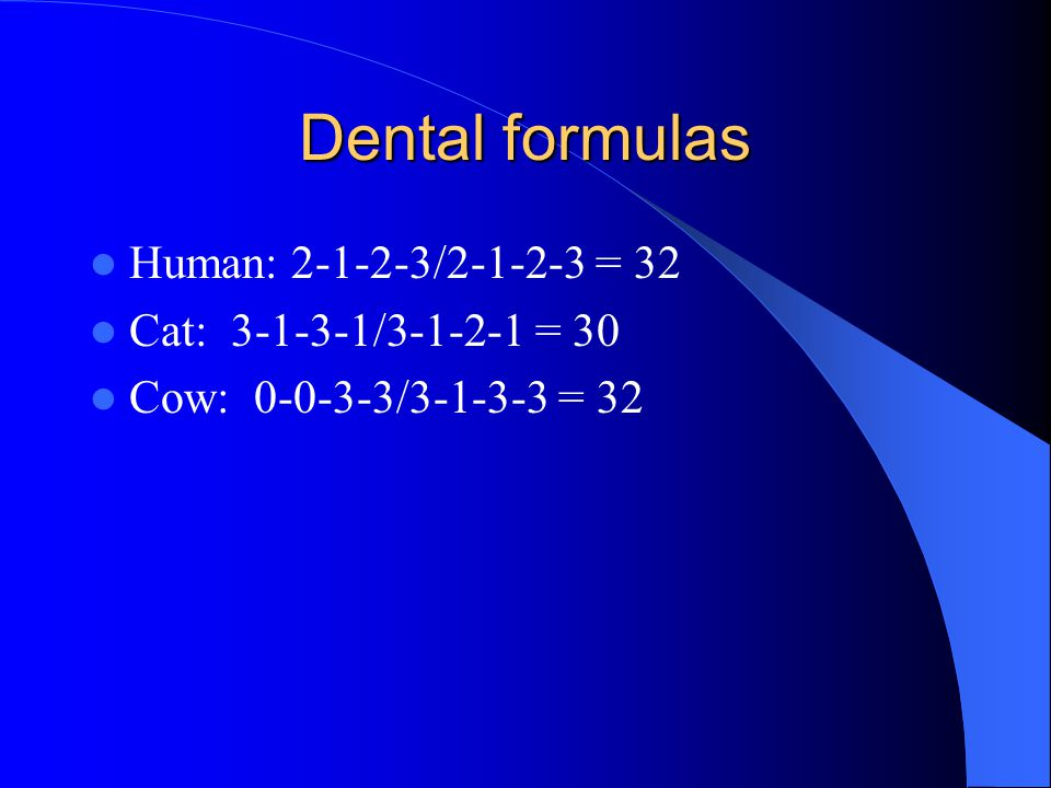 Dental formulas Human: 2-1-2-3/2-1-2-3 = 32 Cat: 3-1-3-1/3-1-2-1 = 30