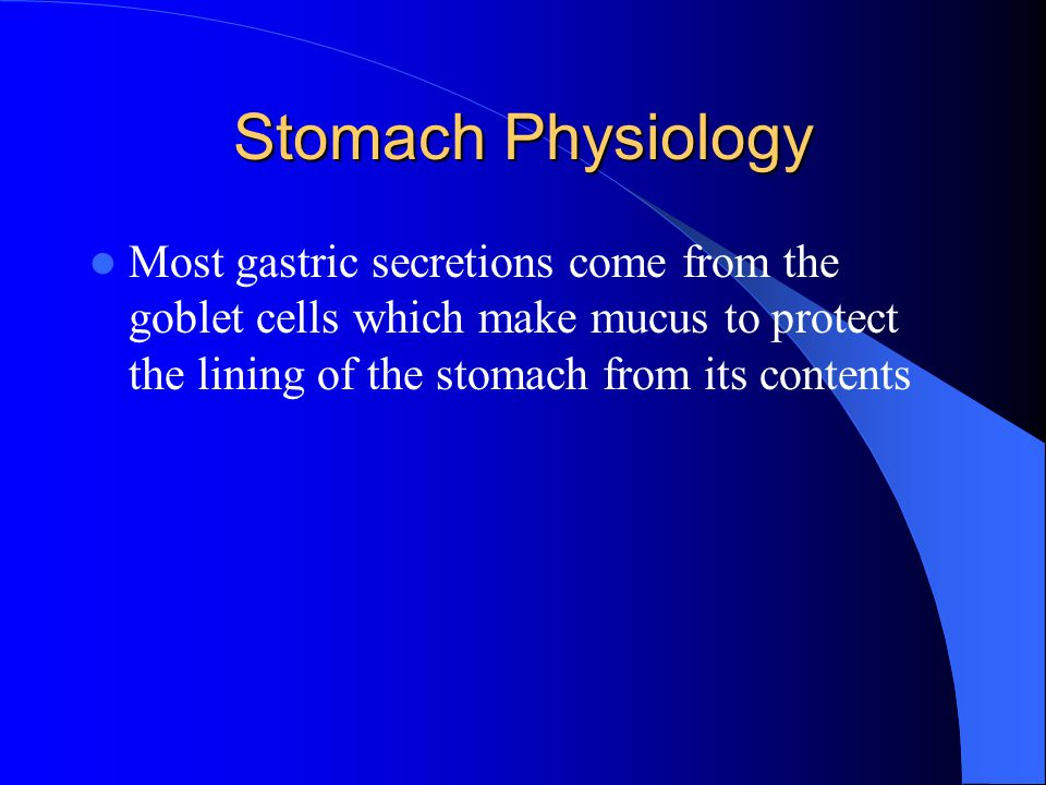 Stomach Physiology Most gastric secretions come from the goblet cells which make mucus to protect the lining of the stomach from its contents.