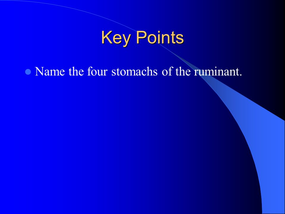 Key Points Name the four stomachs of the ruminant.