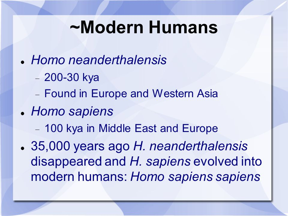 homo sapiens neanderthalensis essay Human evolution is the evolutionary process that led to alternatively designated as homo sapiens neanderthalensis human behavioral ecology human evolution.