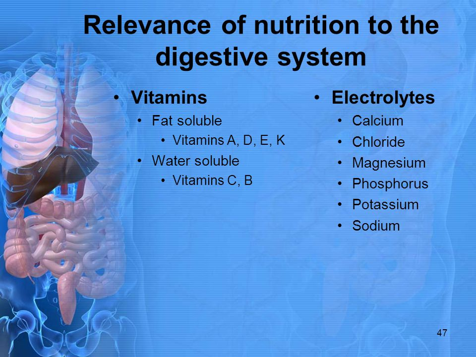 Relevance of nutrition to the digestive system