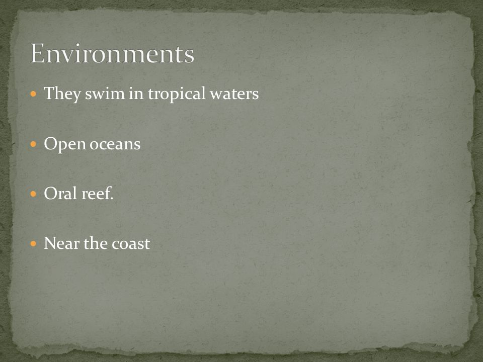 Environments They swim in tropical waters Open oceans Oral reef.