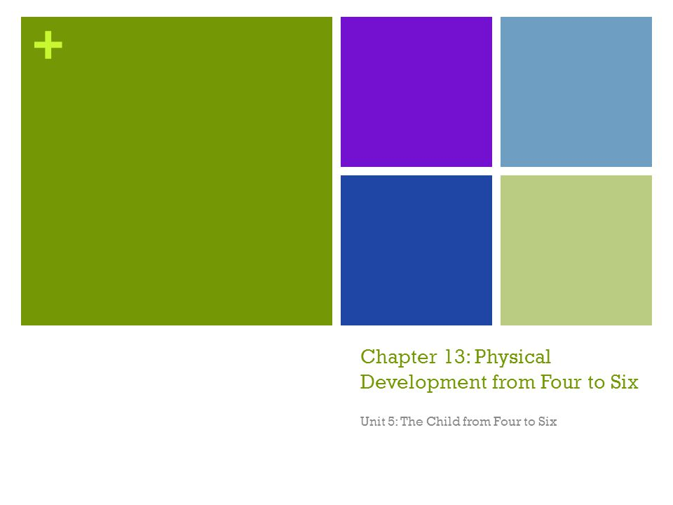 Chapter 13: Physical Development from Four to Six