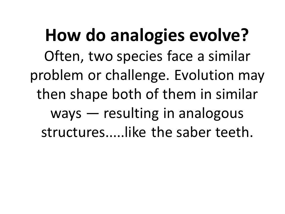 How do analogies evolve