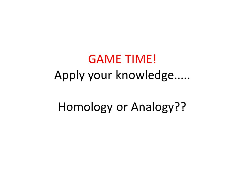 GAME TIME! Apply your knowledge..... Homology or Analogy