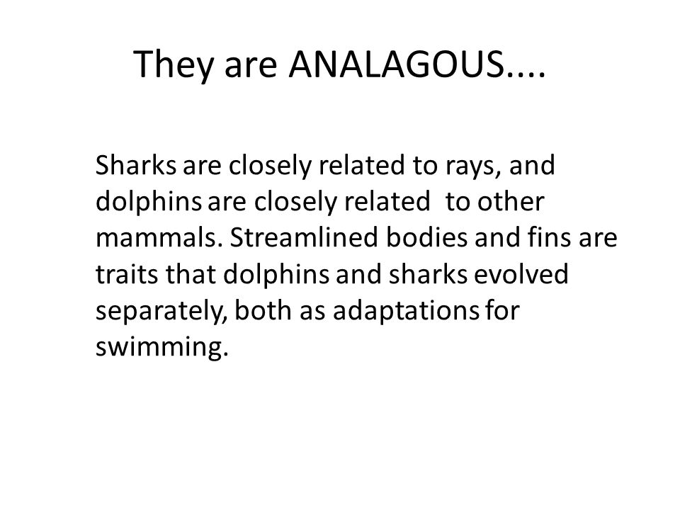 They are ANALAGOUS....