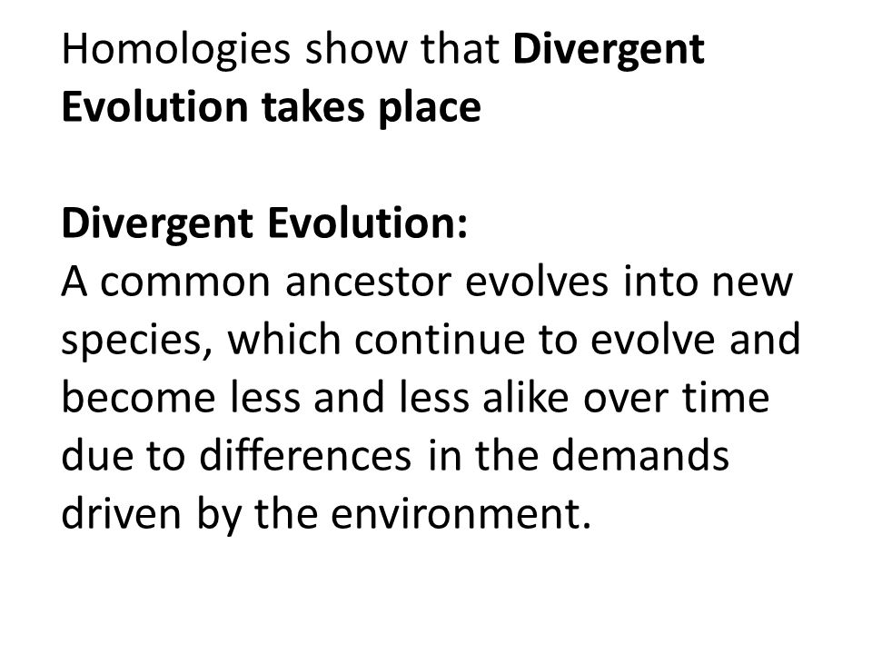 Homologies show that Divergent Evolution takes place Divergent Evolution: A common ancestor evolves into new species, which continue to evolve and become less and less alike over time due to differences in the demands driven by the environment.