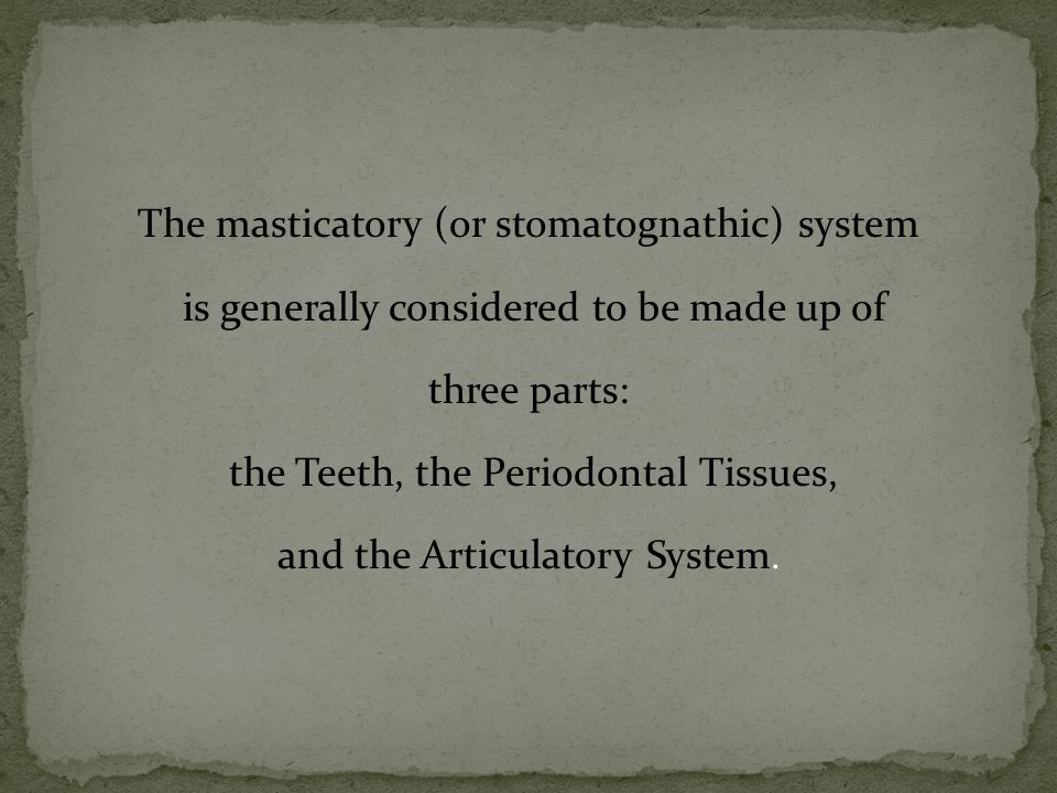 The masticatory (or stomatognathic) system is generally considered to be made up of three parts: the Teeth, the Periodontal Tissues, and the Articulatory System.