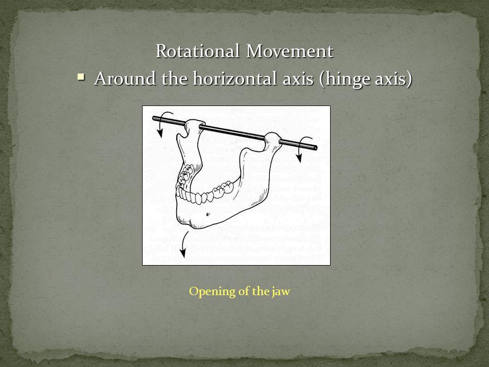 Around the horizontal axis (hinge axis)