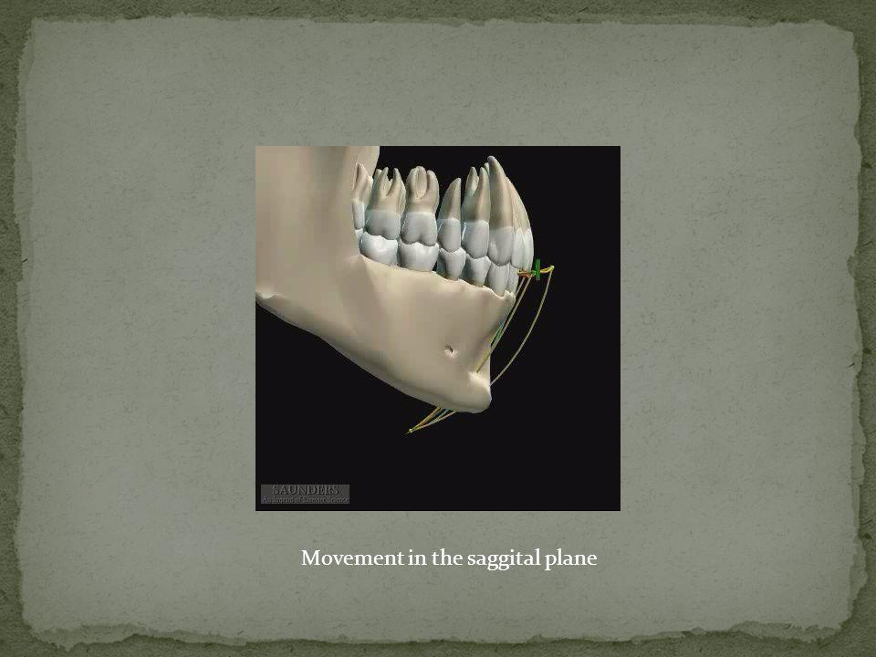 Movement in the saggital plane