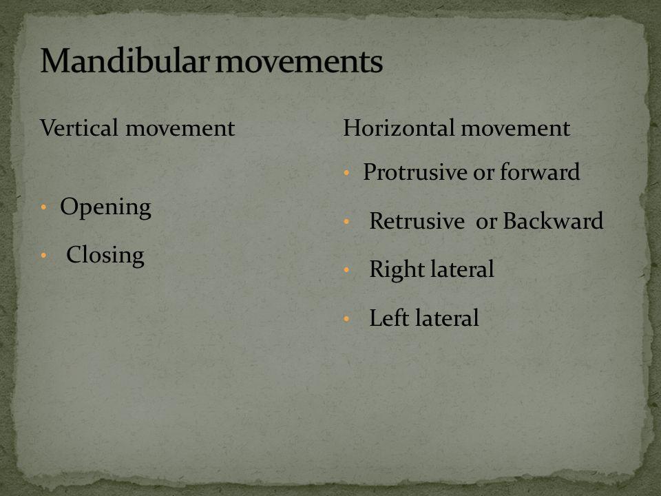 Mandibular movements Vertical movement Opening Closing
