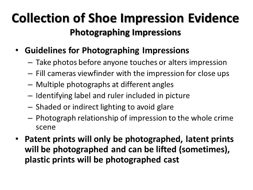 Collection of Shoe Impression Evidence Photographing Impressions