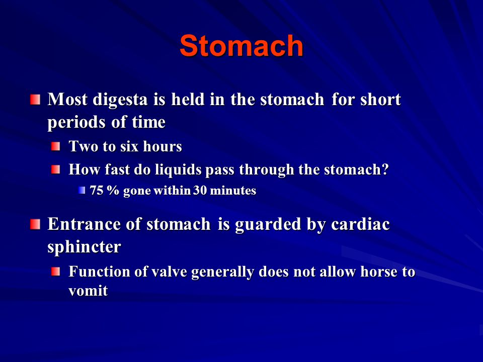 Stomach Most digesta is held in the stomach for short periods of time