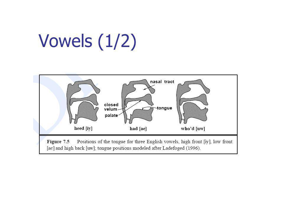 Vowels (1/2)