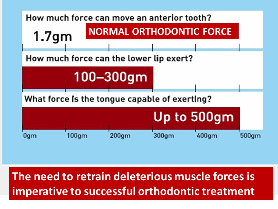 NORMAL ORTHODONTIC FORCE