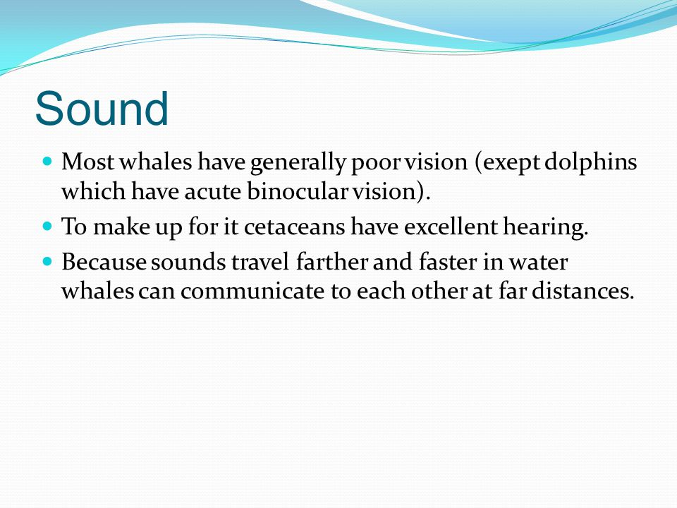 Sound Most whales have generally poor vision (exept dolphins which have acute binocular vision). To make up for it cetaceans have excellent hearing.