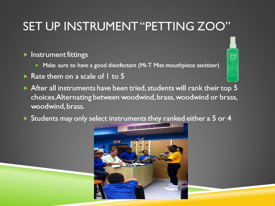 Set up instrument petting zoo