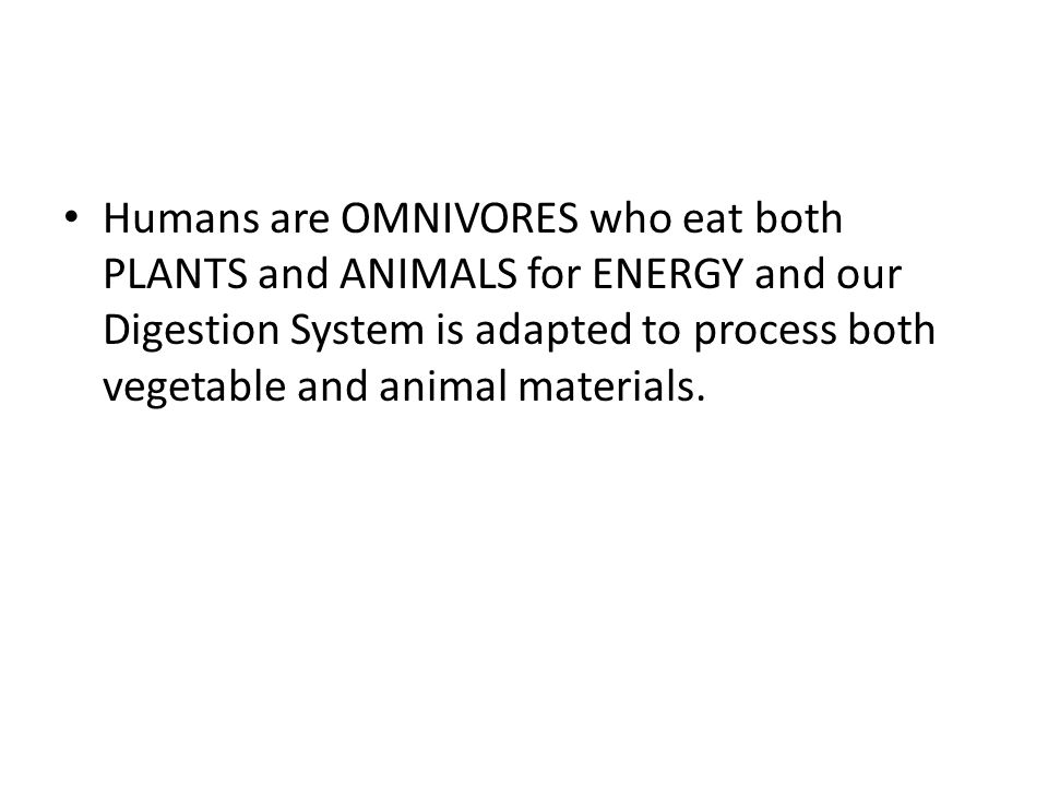 Humans are OMNIVORES who eat both PLANTS and ANIMALS for ENERGY and our Digestion System is adapted to process both vegetable and animal materials.