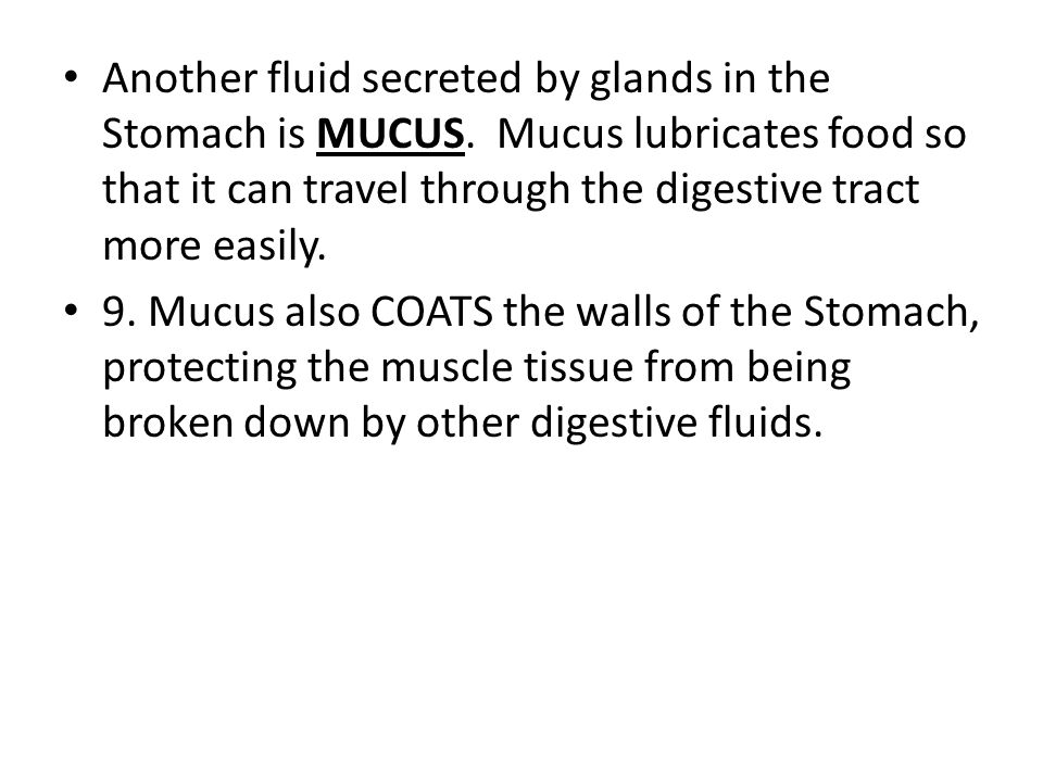 Another fluid secreted by glands in the Stomach is MUCUS