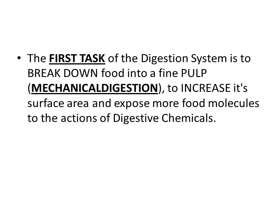The FIRST TASK of the Digestion System is to BREAK DOWN food into a fine PULP (MECHANICALDIGESTION), to INCREASE it s surface area and expose more food molecules to the actions of Digestive Chemicals.
