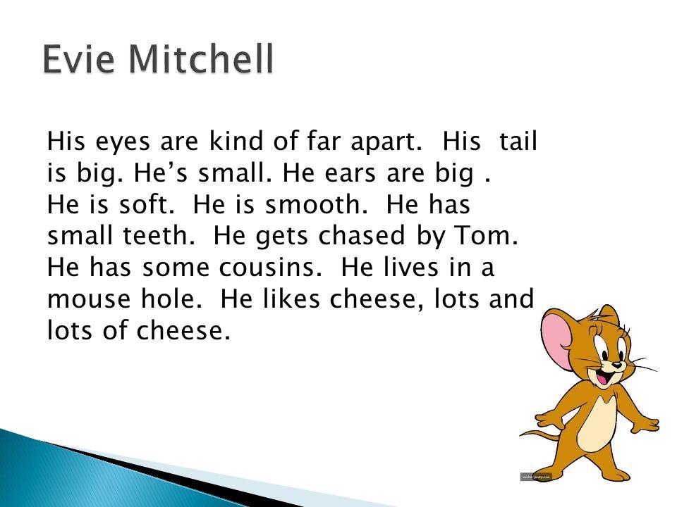 Evie Mitchell