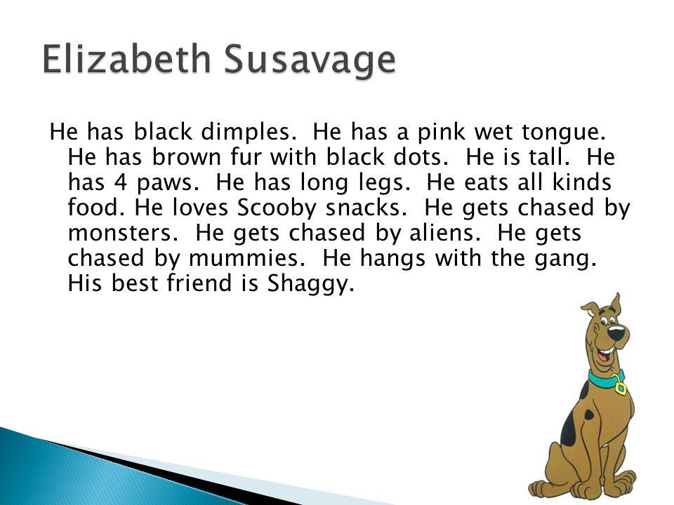 Elizabeth Susavage