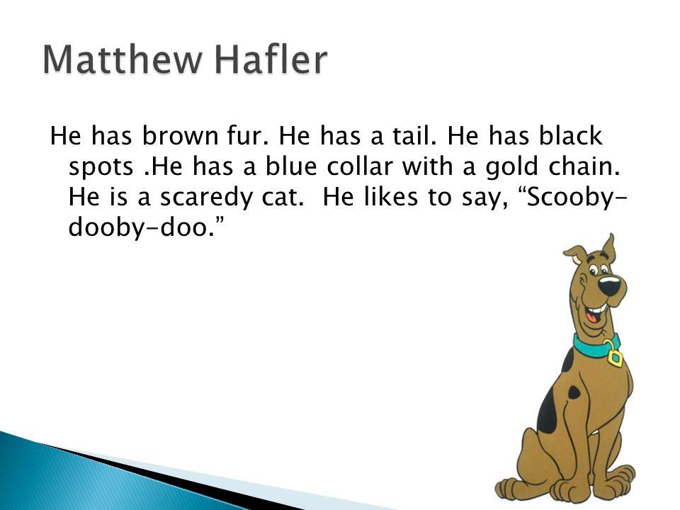 Matthew Hafler