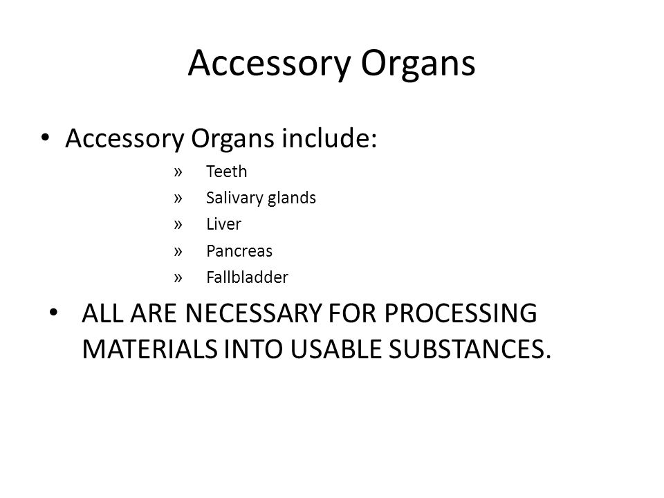 Accessory Organs Accessory Organs include: