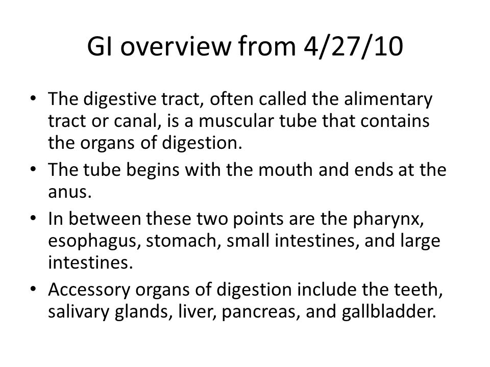 GI overview from 4/27/10 The digestive tract, often called the alimentary tract or canal, is a muscular tube that contains the organs of digestion.