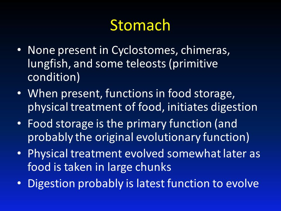 Stomach None present in Cyclostomes, chimeras, lungfish, and some teleosts (primitive condition)