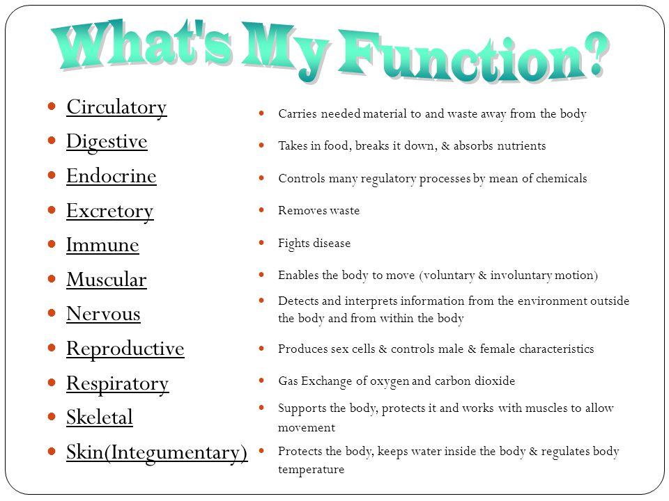 What s My Function Circulatory Digestive Endocrine Excretory Immune