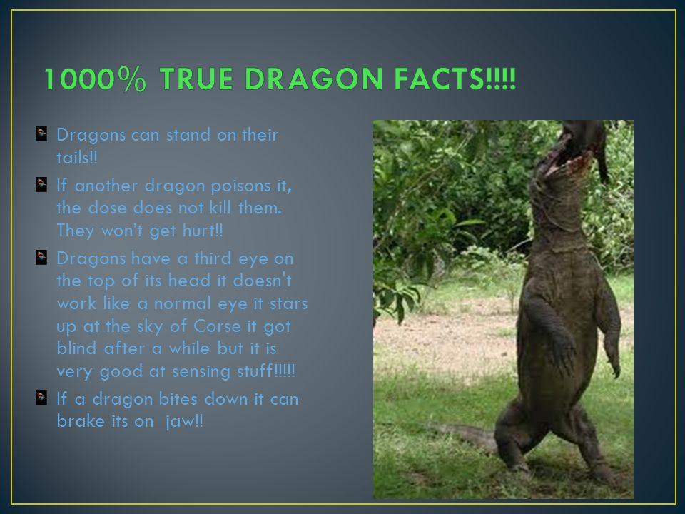 1000% TRUE DRAGON FACTS!!!! Dragons can stand on their tails!!