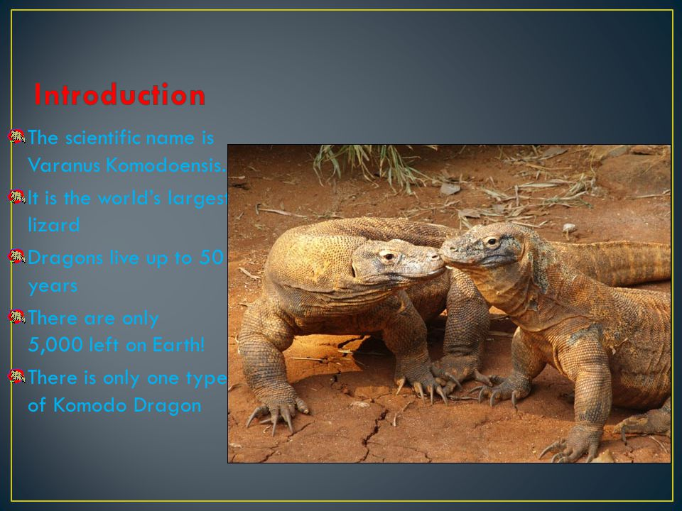 Introduction The scientific name is Varanus Komodoensis.