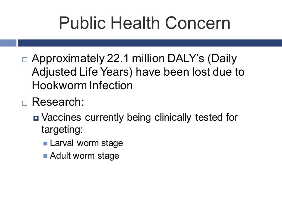 Public Health Concern Approximately 22.1 million DALY's (Daily Adjusted Life Years) have been lost due to Hookworm Infection.