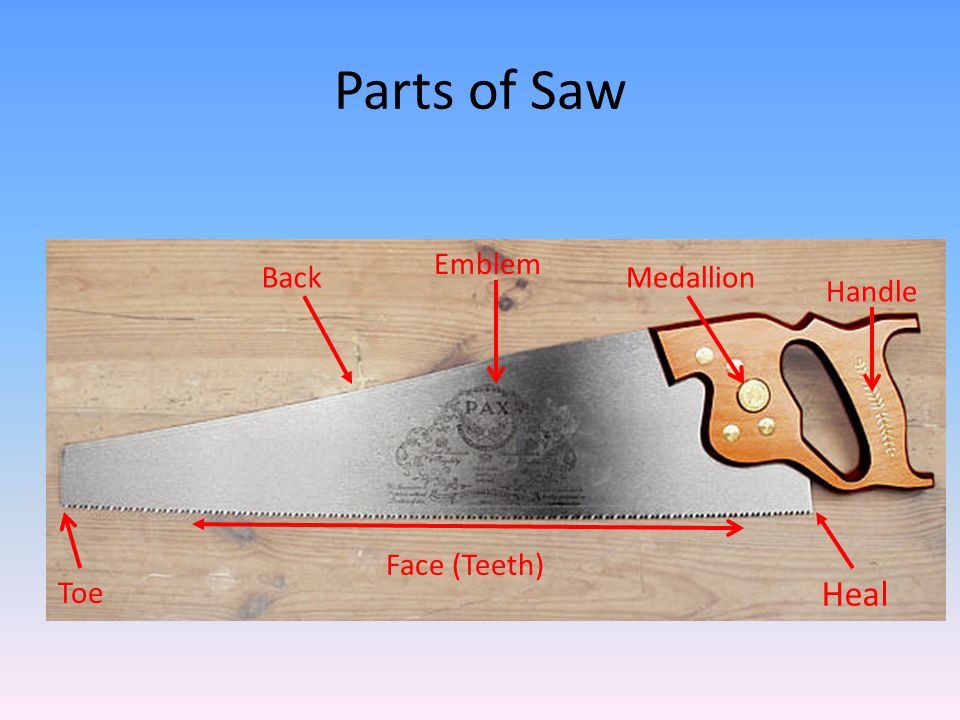 Parts of Saw Emblem Back Medallion Handle Face (Teeth) Toe Heal
