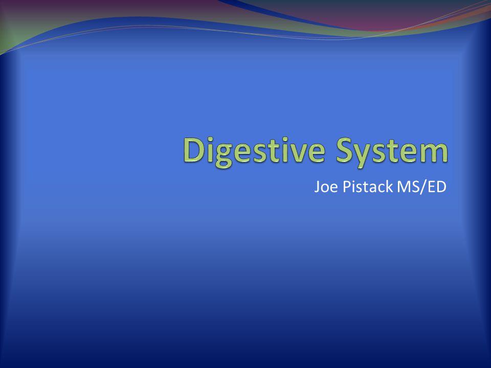 Digestive System Joe Pistack MS/ED