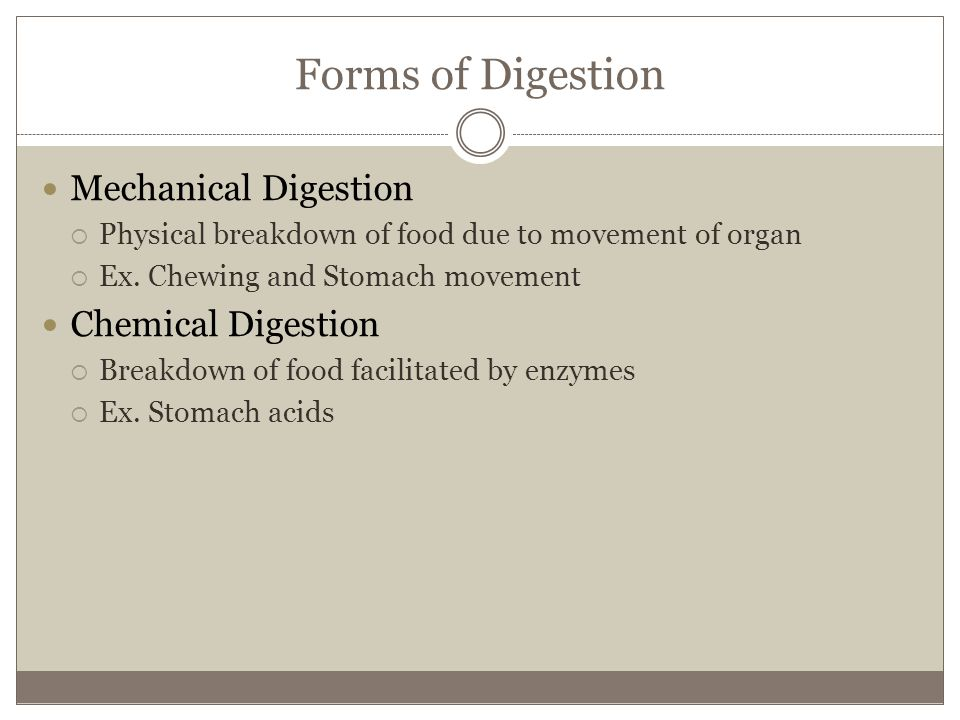 Forms of Digestion Mechanical Digestion Chemical Digestion