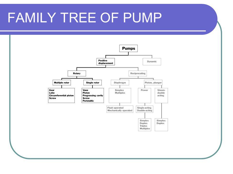 FAMILY TREE OF PUMP