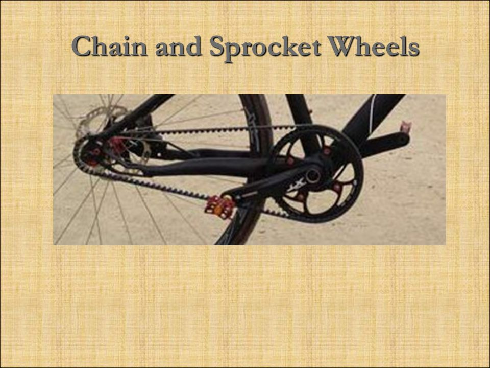 Chain and Sprocket Wheels