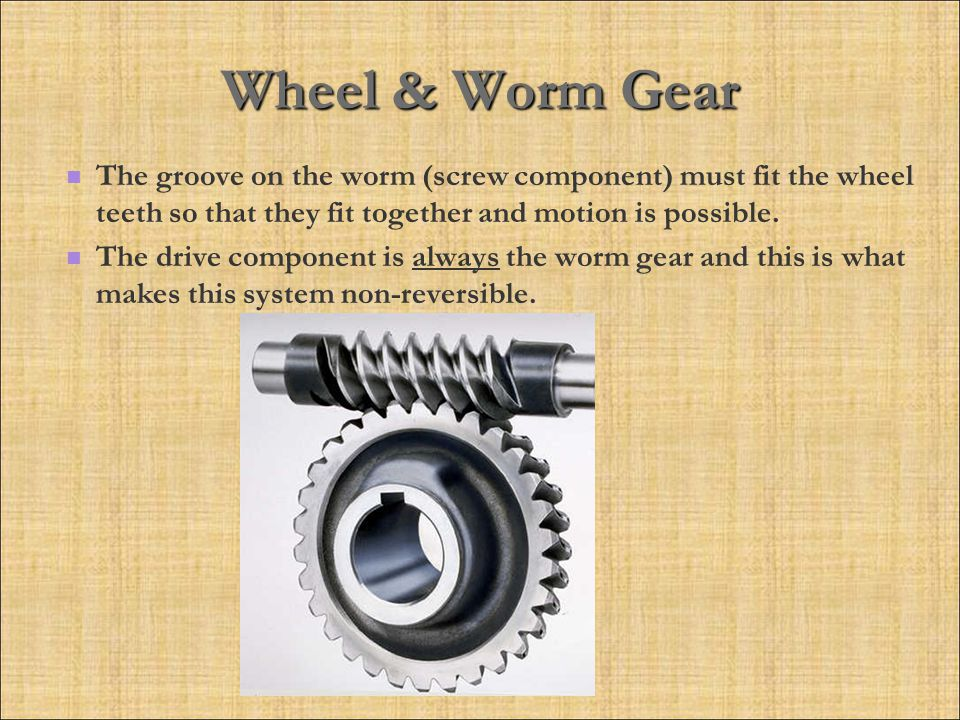 Wheel & Worm Gear The groove on the worm (screw component) must fit the wheel teeth so that they fit together and motion is possible.