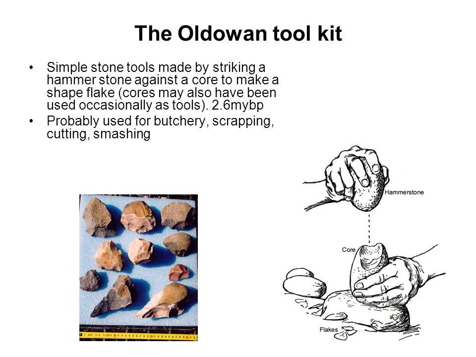 The Oldowan tool kit