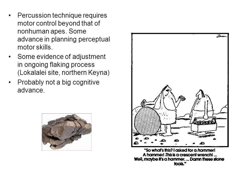 Percussion technique requires motor control beyond that of nonhuman apes. Some advance in planning perceptual motor skills.
