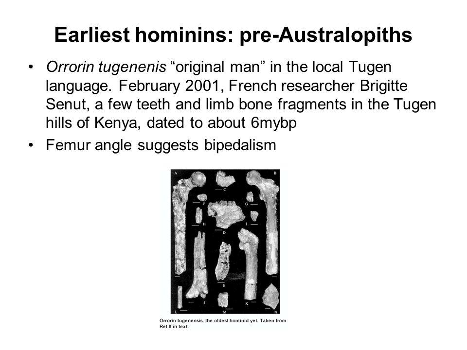 Earliest hominins: pre-Australopiths