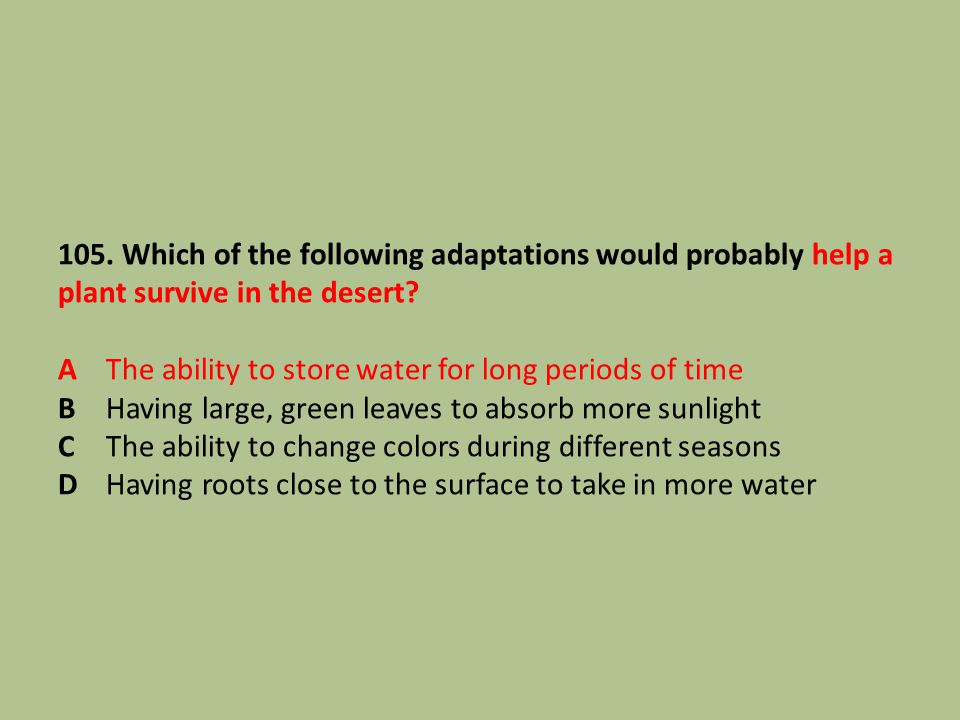 105. Which of the following adaptations would probably help a plant survive in the desert.