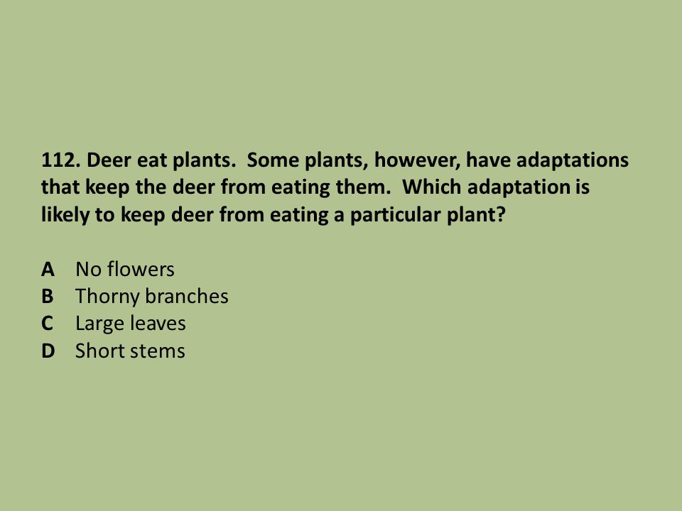 112. Deer eat plants. Some plants, however, have adaptations that keep the deer from eating them.