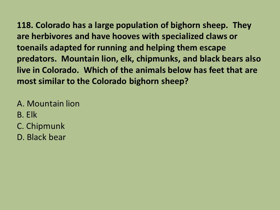 118. Colorado has a large population of bighorn sheep