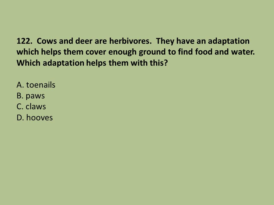 122. Cows and deer are herbivores