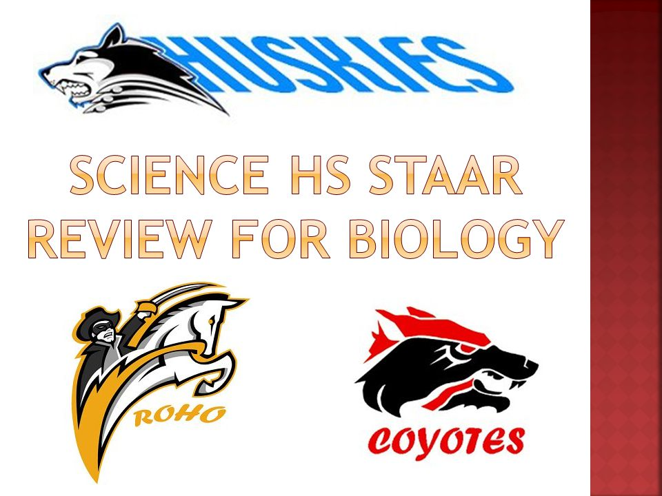Science HS STAAR Review for biology