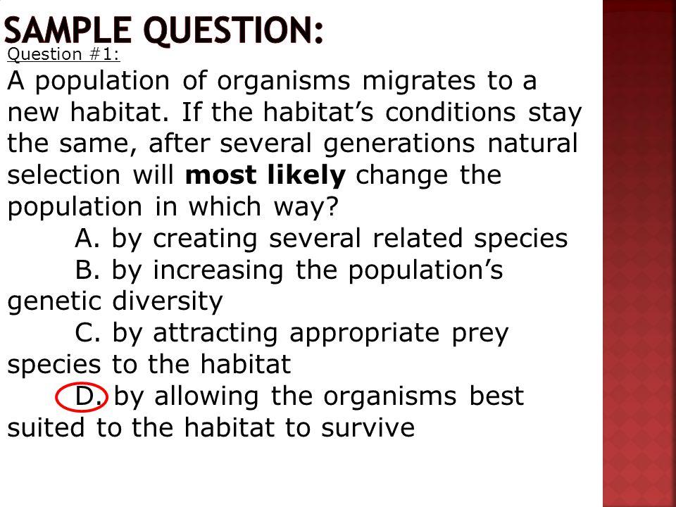 Sample question: Question #1: